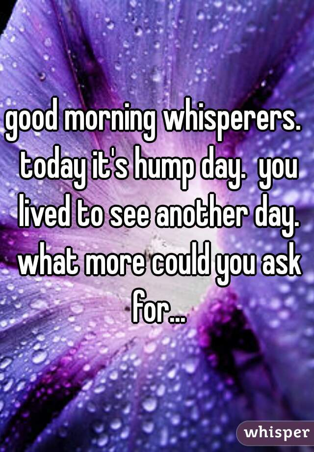good morning whisperers.  today it's hump day.  you lived to see another day. what more could you ask for...