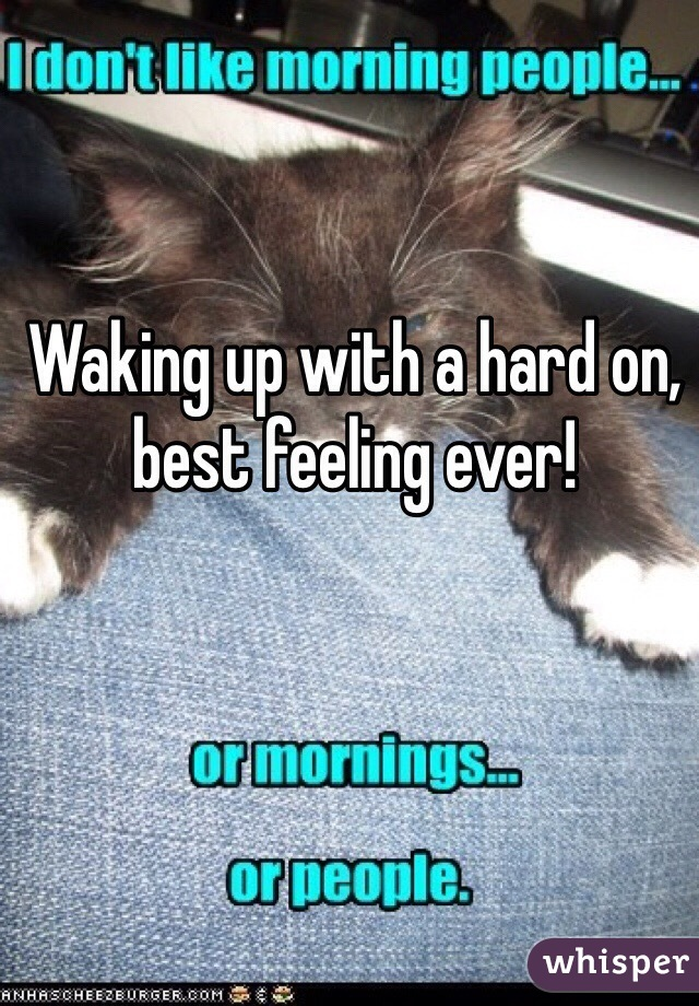 Waking up with a hard on, best feeling ever!