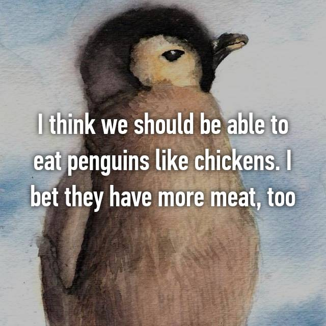 I think we should be able to eat penguins like chickens. I bet they have more meat, too