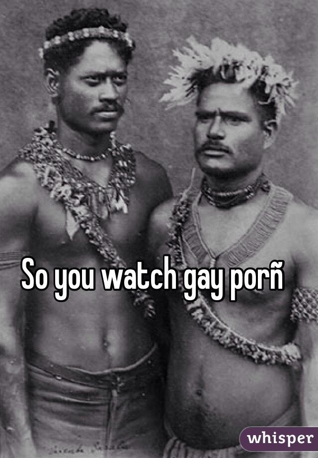 Gay porñ