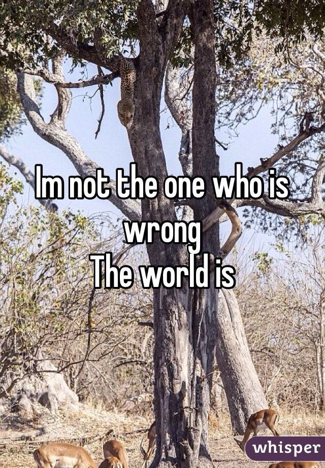 Im not the one who is wrong The world is