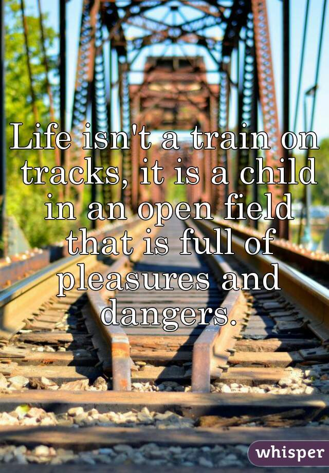 Life isn't a train on tracks, it is a child in an open field that is full of pleasures and dangers.