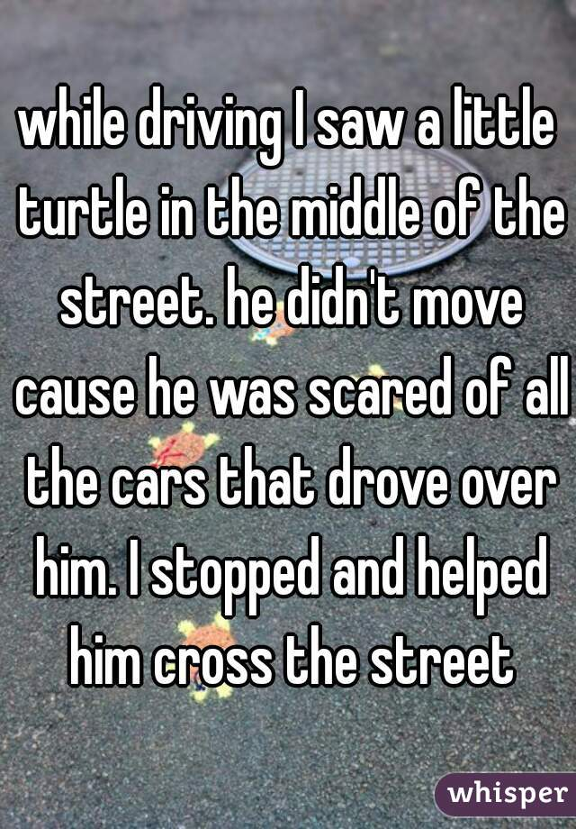 while driving I saw a little turtle in the middle of the street. he didn't move cause he was scared of all the cars that drove over him. I stopped and helped him cross the street