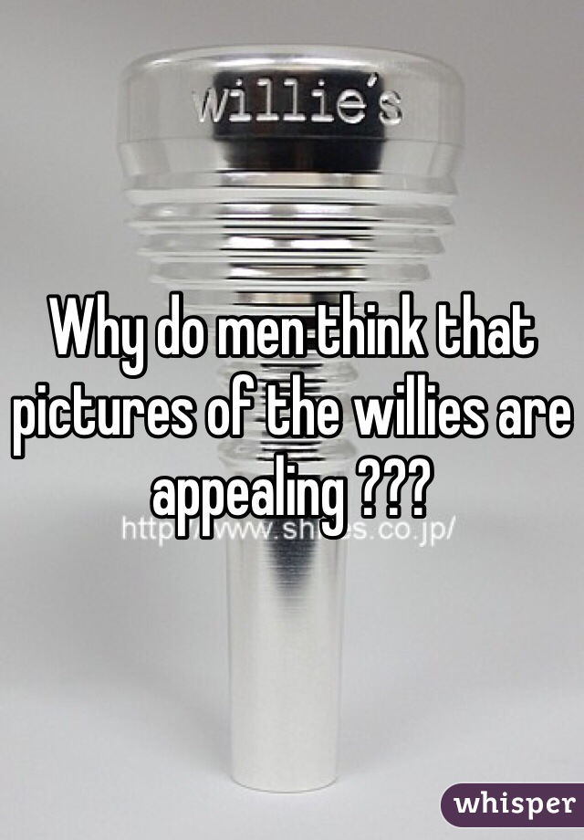 Why do men think that pictures of the willies are appealing ???