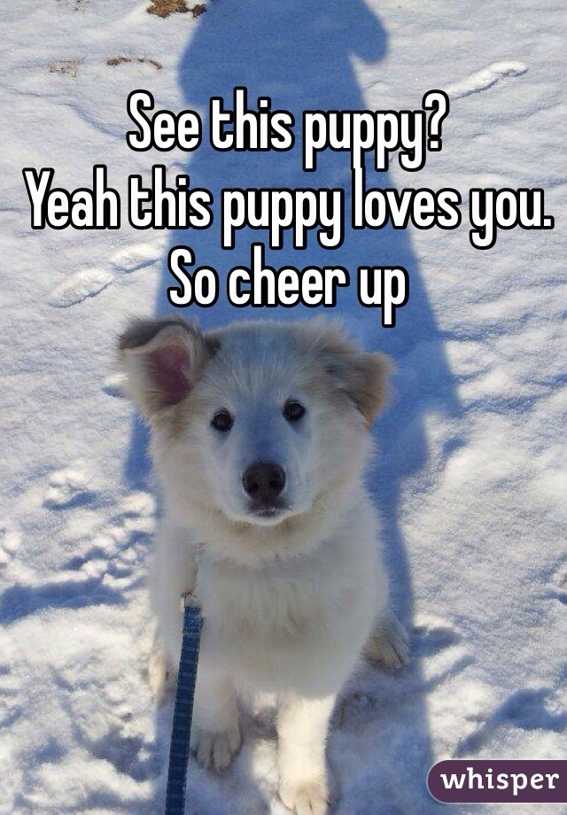 See this puppy? Yeah this puppy loves you.  So cheer up
