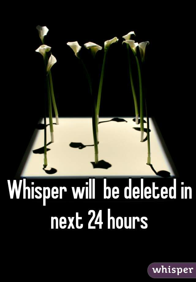 Whisper will  be deleted in next 24 hours