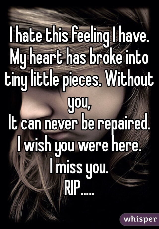 I hate this feeling I have. My heart has broke into tiny little pieces. Without you, It can never be repaired. I wish you were here. I miss you. RIP.....