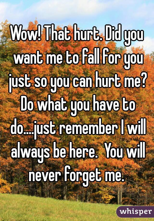 Wow! That hurt. Did you want me to fall for you just so you can hurt me? Do what you have to do....just remember I will always be here.  You will never forget me.