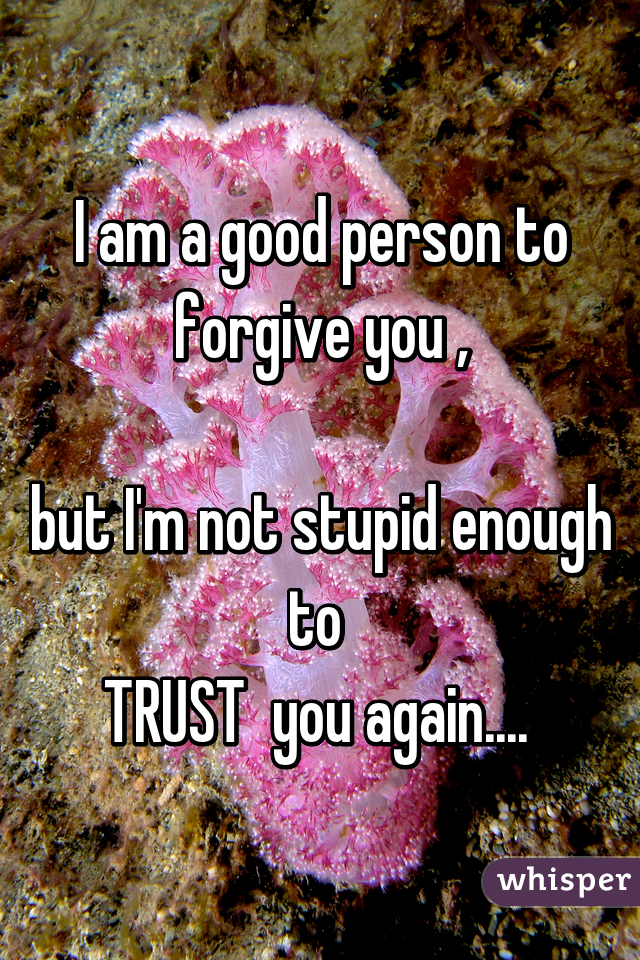 I am a good person to forgive you ,  but I'm not stupid enough to  TRUST  you again....