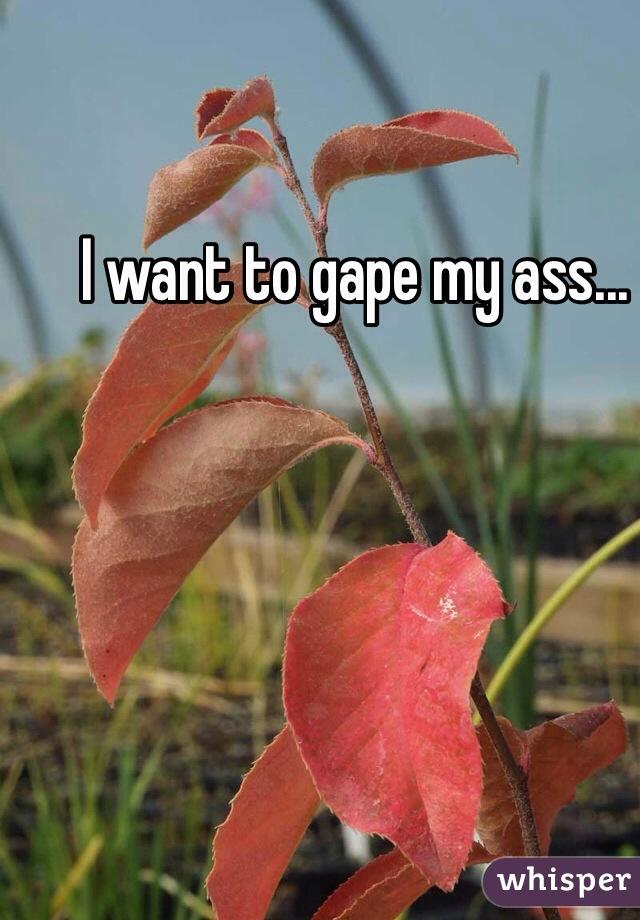 Gape in my ass
