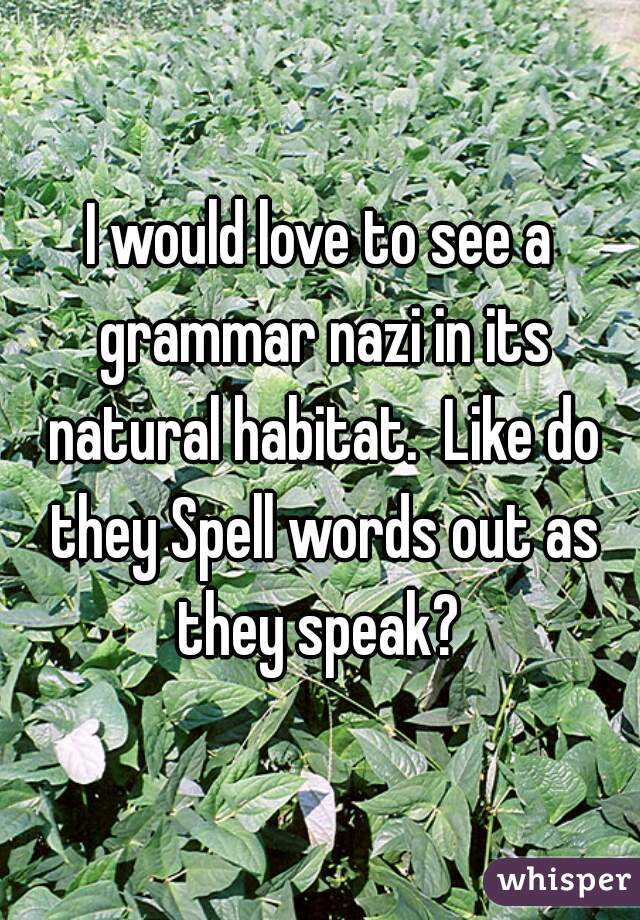 I would love to see a grammar nazi in its natural habitat.  Like do they Spell words out as they speak?