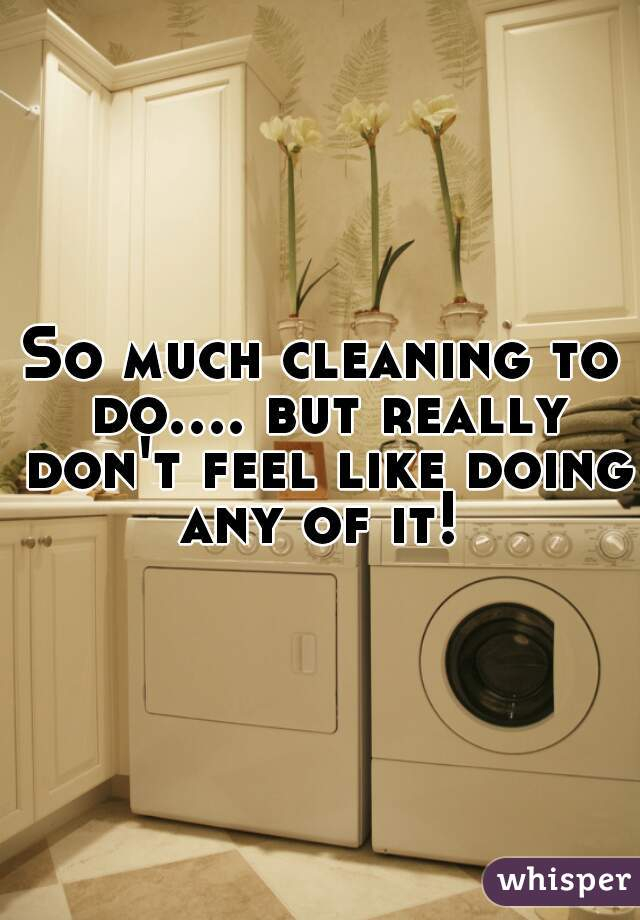 So much cleaning to do.... but really don't feel like doing any of it!