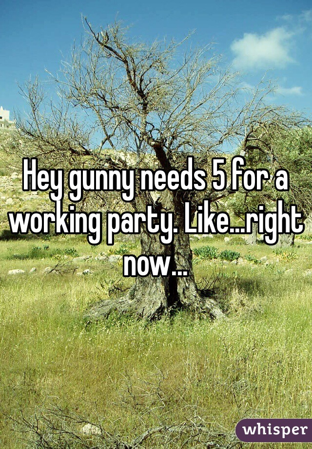Hey gunny needs 5 for a working party. Like...right now...