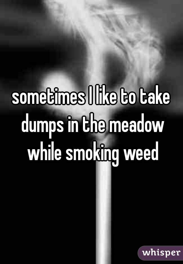 sometimes I like to take dumps in the meadow while smoking weed