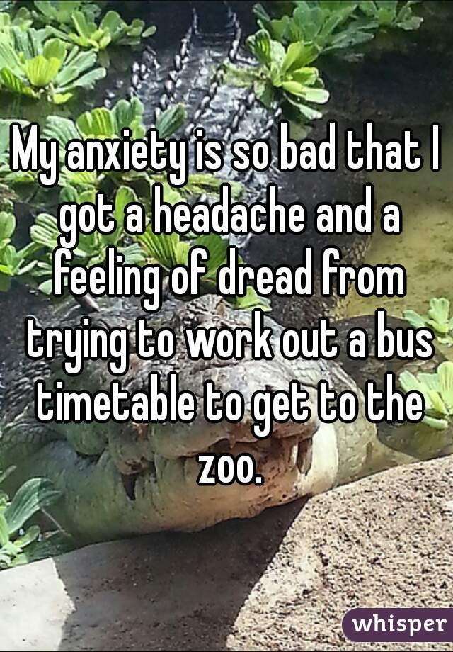 My anxiety is so bad that I got a headache and a feeling of dread from trying to work out a bus timetable to get to the zoo.