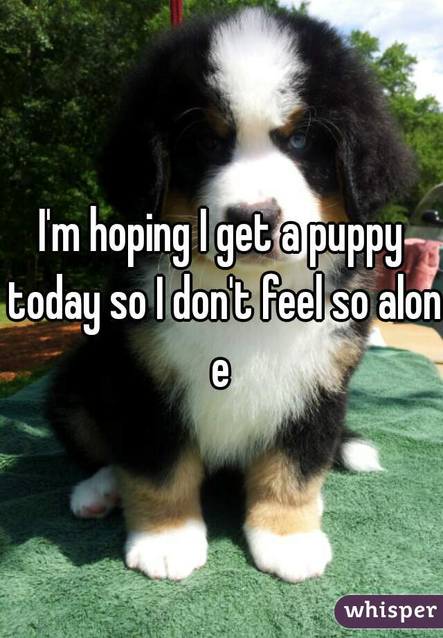 I'm hoping I get a puppy today so I don't feel so alone