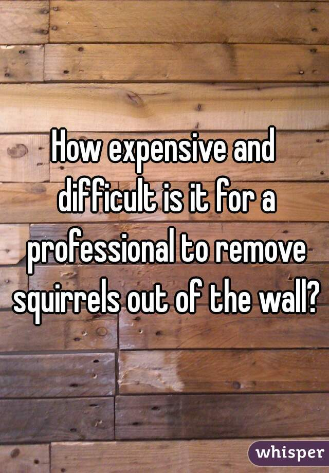How expensive and difficult is it for a professional to remove squirrels out of the wall?