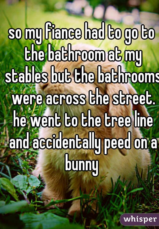 so my fiance had to go to the bathroom at my stables but the bathrooms were across the street. he went to the tree line and accidentally peed on a bunny