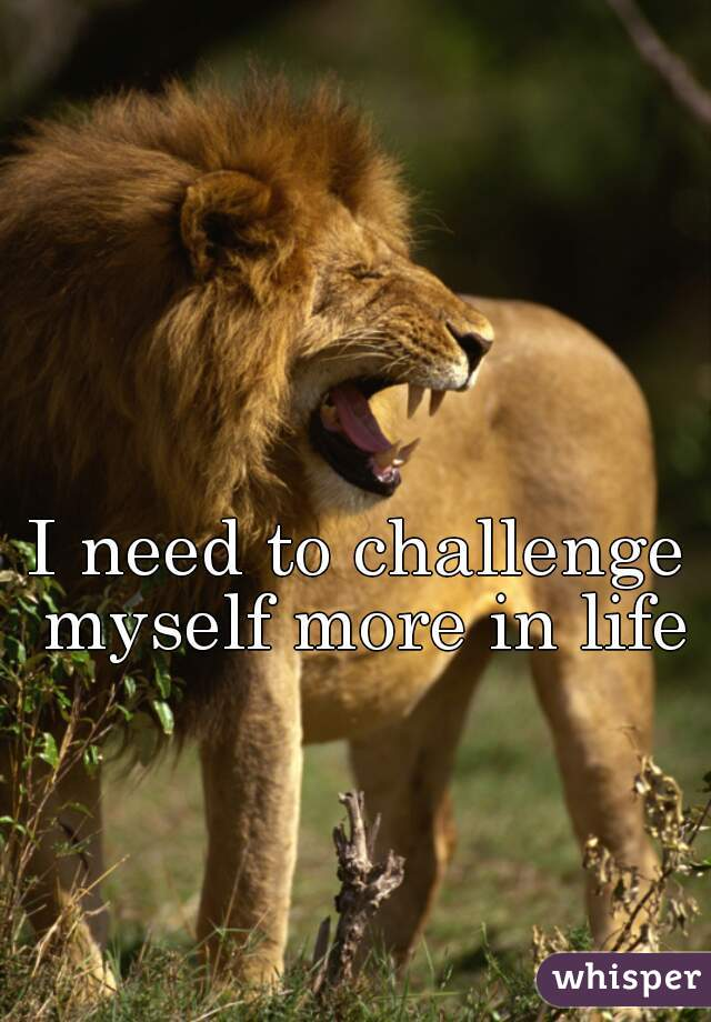 I need to challenge myself more in life
