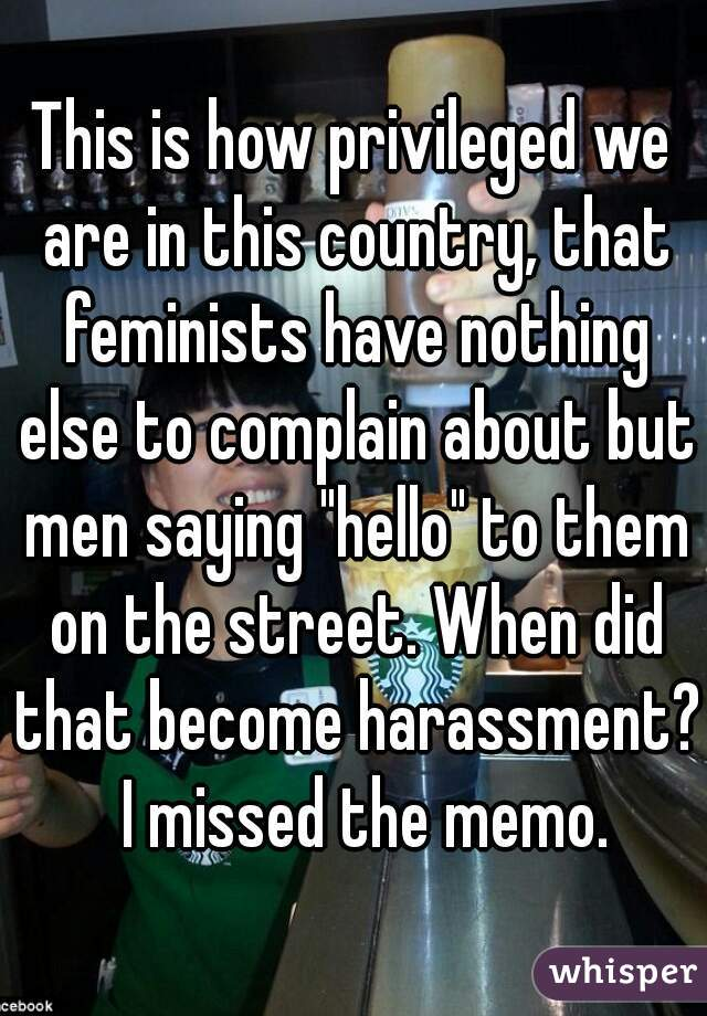 "This is how privileged we are in this country, that feminists have nothing else to complain about but men saying ""hello"" to them on the street. When did that become harassment?  I missed the memo."