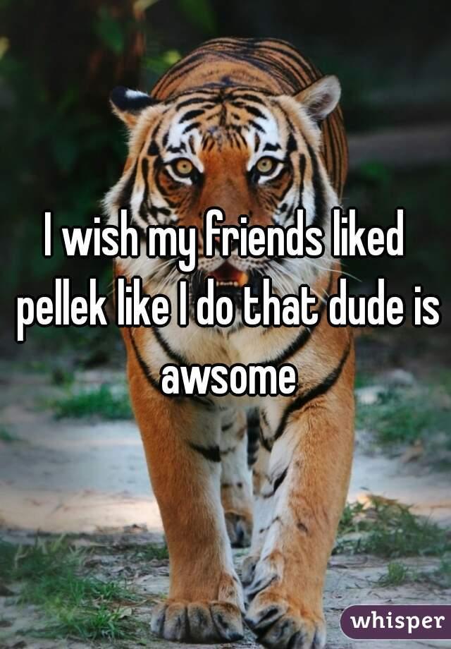 I wish my friends liked pellek like I do that dude is awsome