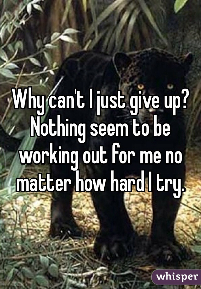 Why can't I just give up? Nothing seem to be working out for me no matter how hard I try.