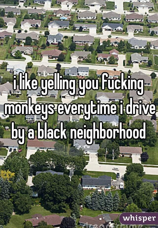 i like yelling you fucking monkeys everytime i drive by a black neighborhood