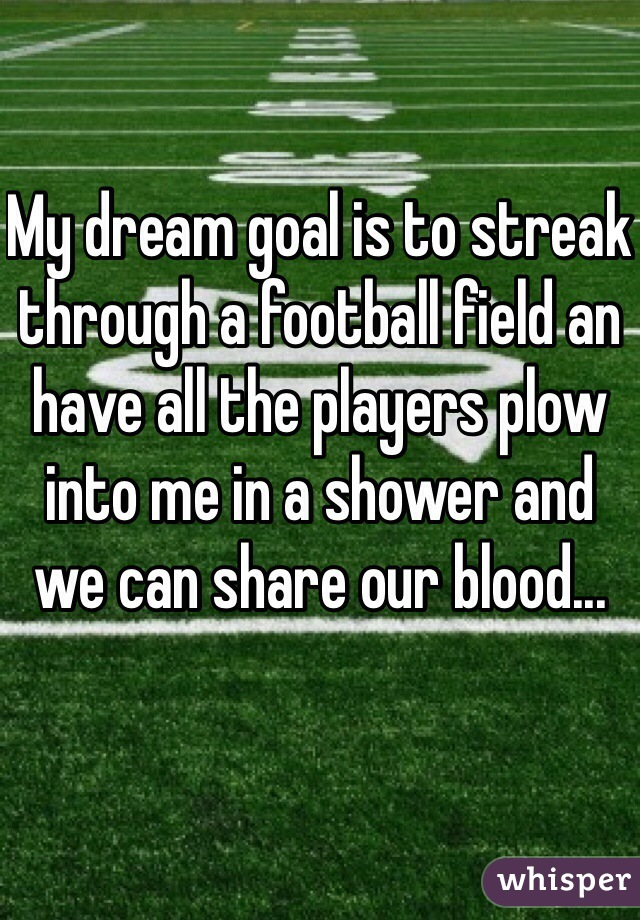 My dream goal is to streak through a football field an have all the players plow into me in a shower and we can share our blood...
