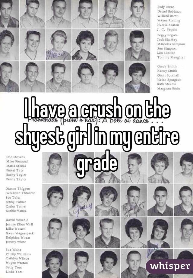 I have a crush on the shyest girl in my entire grade