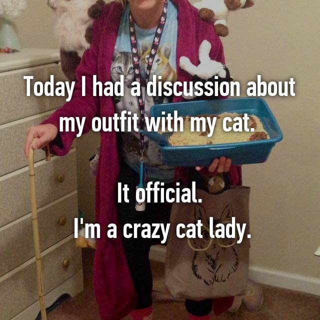 Today I had a discussion about my outfit with my cat.   It official.  I'm a crazy cat lady.