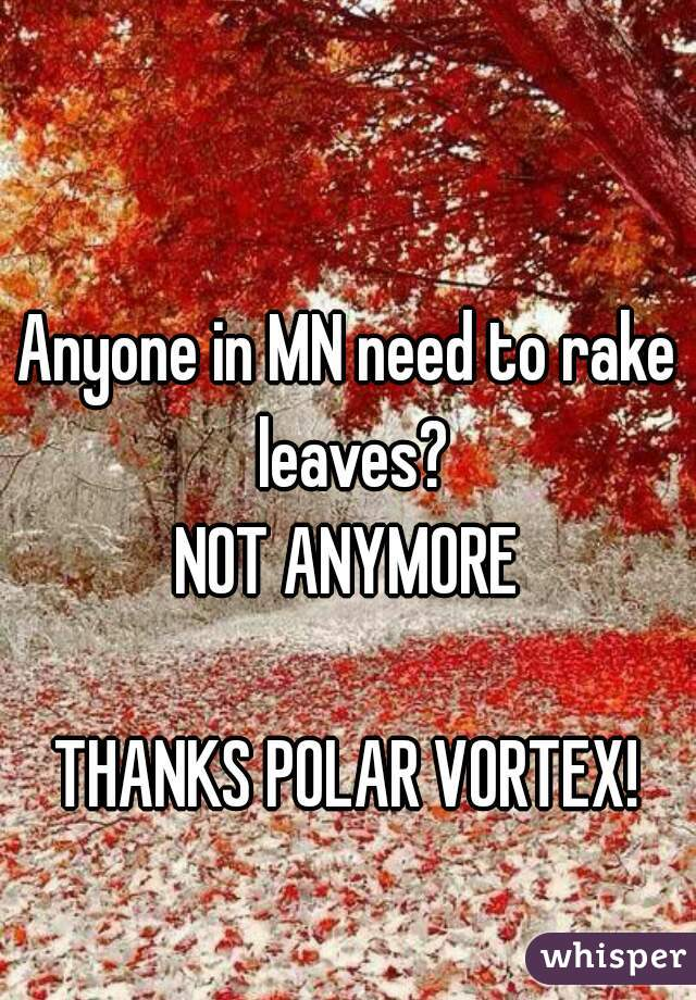Anyone in MN need to rake leaves? NOT ANYMORE  THANKS POLAR VORTEX!