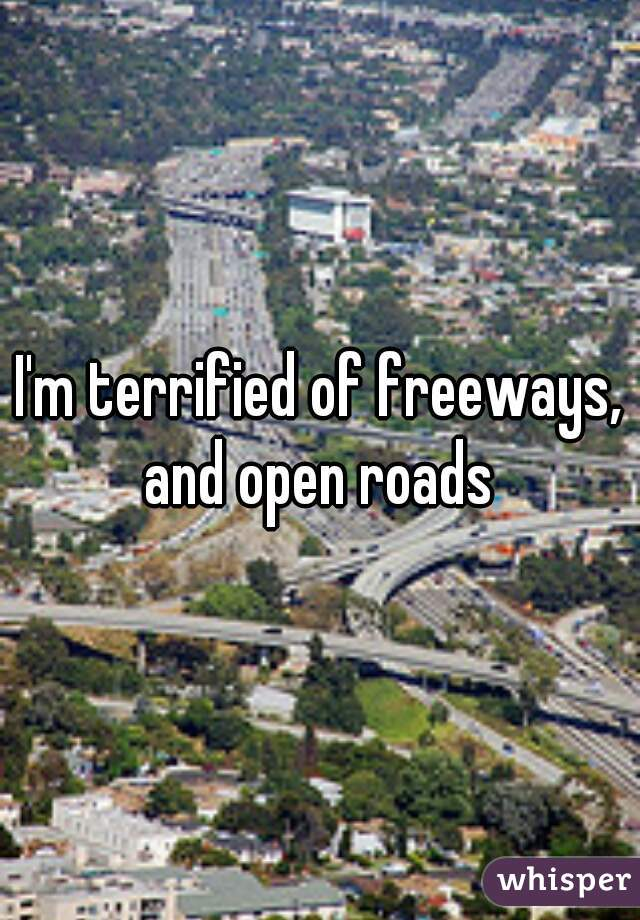 I'm terrified of freeways, and open roads