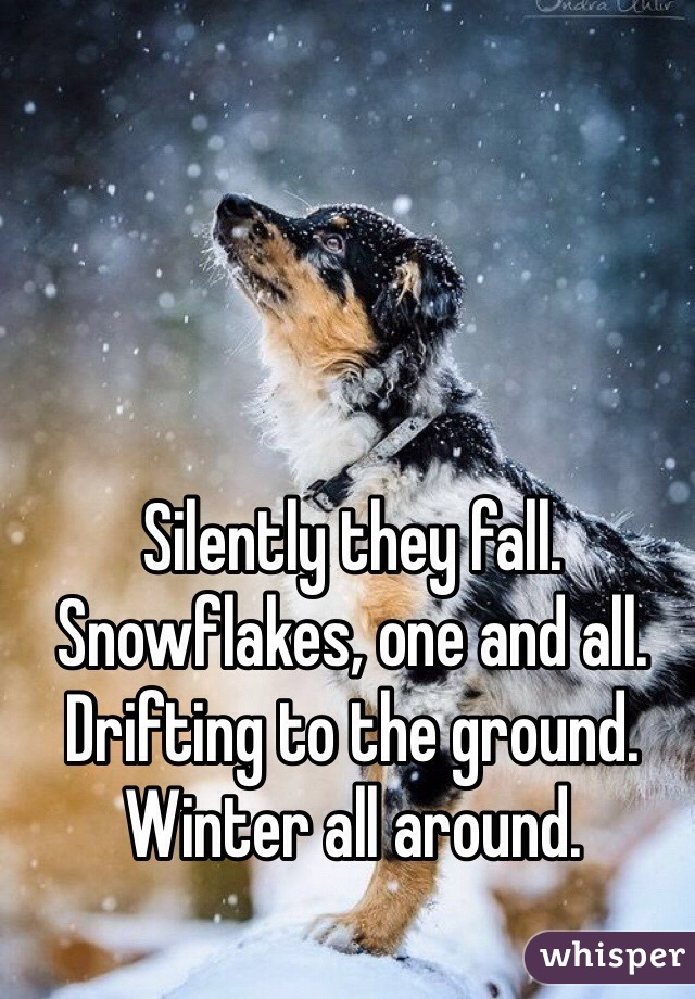Silently they fall. Snowflakes, one and all. Drifting to the ground. Winter all around.