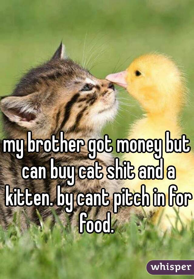 my brother got money but can buy cat shit and a kitten. by cant pitch in for food.