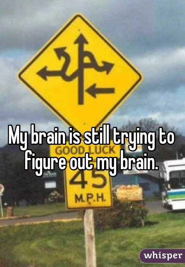 My brain is still trying to figure out my brain.
