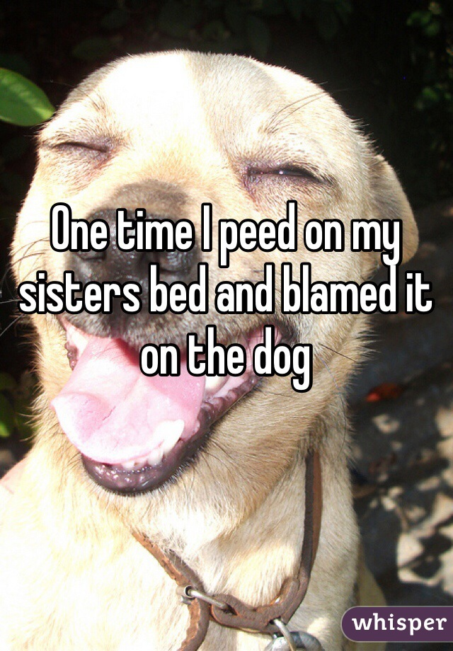 One time I peed on my sisters bed and blamed it on the dog
