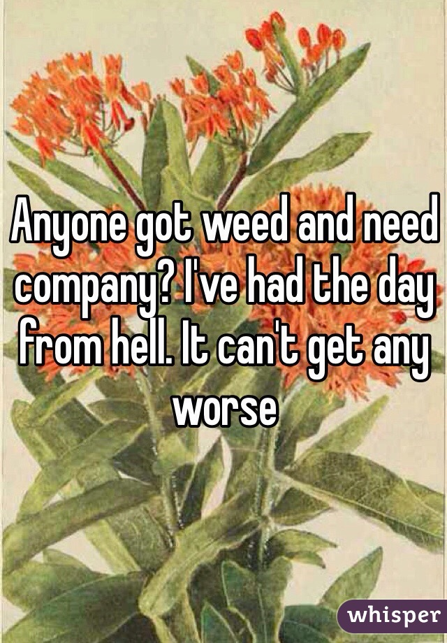 Anyone got weed and need company? I've had the day from hell. It can't get any worse