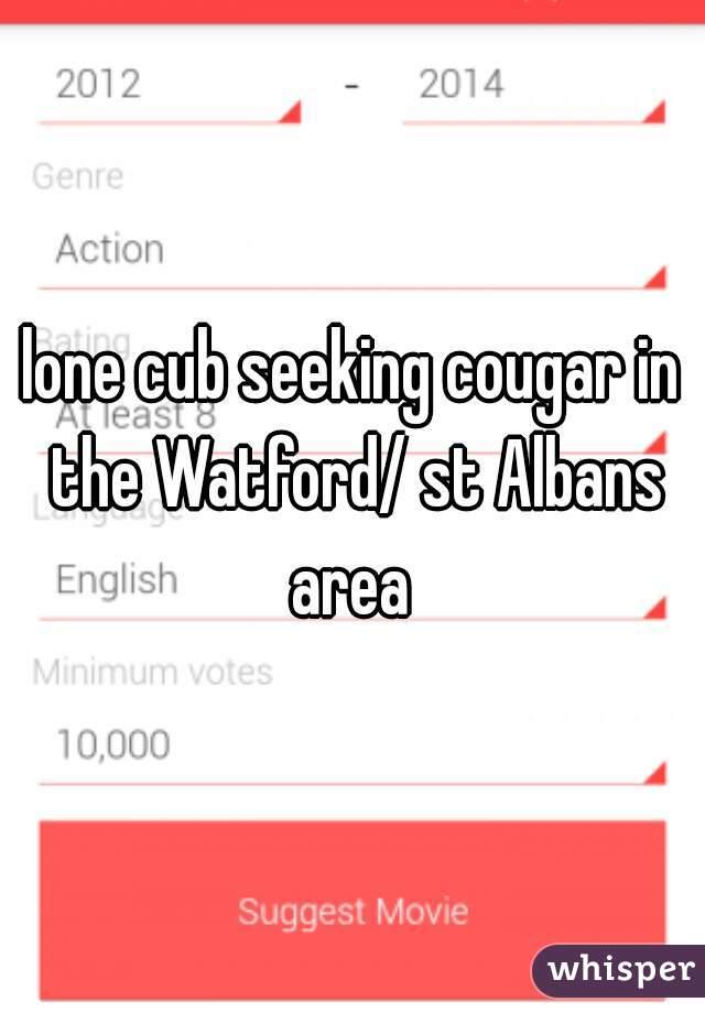 lone cub seeking cougar in the Watford/ st Albans area