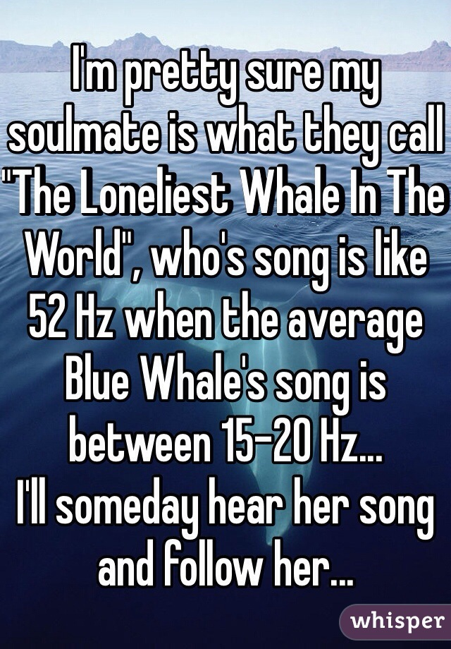 "I'm pretty sure my soulmate is what they call ""The Loneliest Whale In The World"", who's song is like 52 Hz when the average Blue Whale's song is between 15-20 Hz... I'll someday hear her song and follow her..."