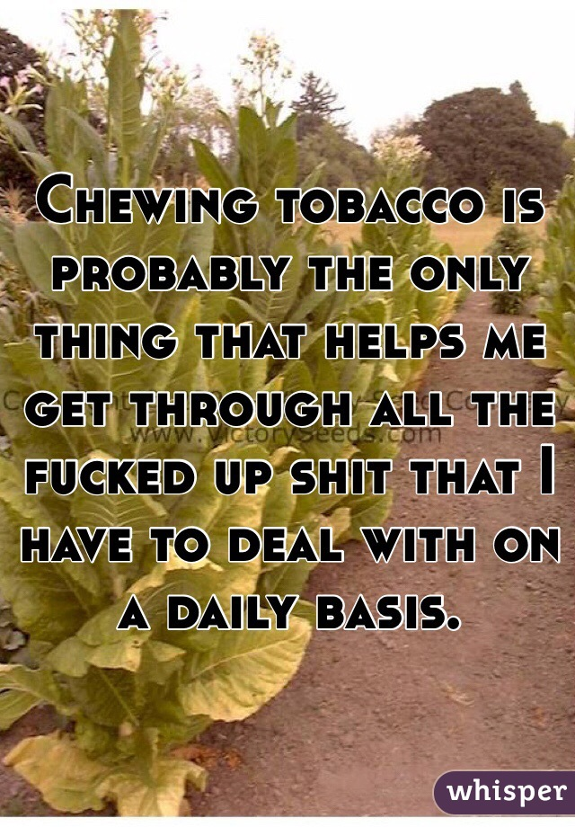 Chewing tobacco is probably the only thing that helps me get through all the fucked up shit that I have to deal with on a daily basis.