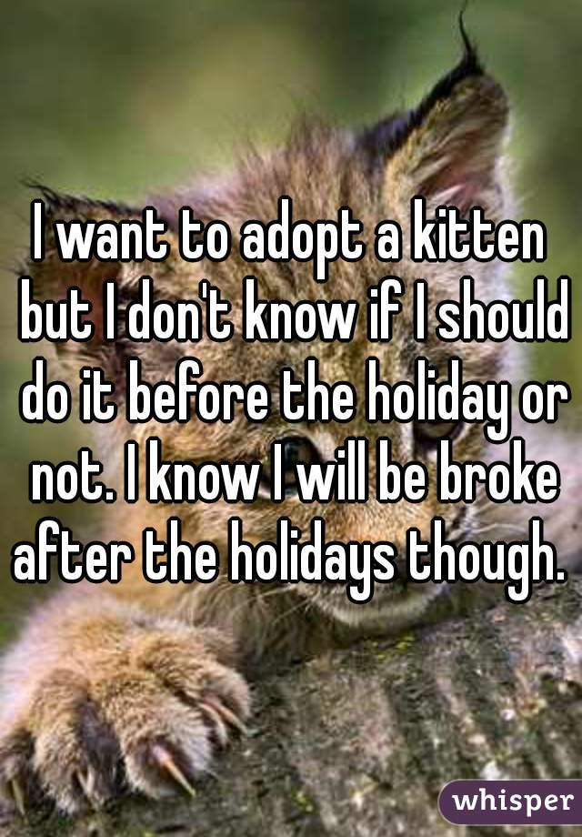 I want to adopt a kitten but I don't know if I should do it before the holiday or not. I know I will be broke after the holidays though.