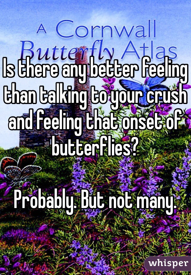 Is there any better feeling than talking to your crush and feeling that onset of butterflies?  Probably. But not many.