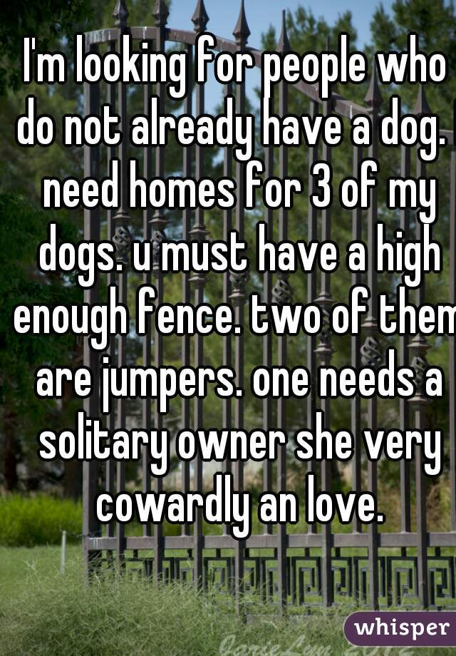 I'm looking for people who do not already have a dog. I need homes for 3 of my dogs. u must have a high enough fence. two of them are jumpers. one needs a solitary owner she very cowardly an love.