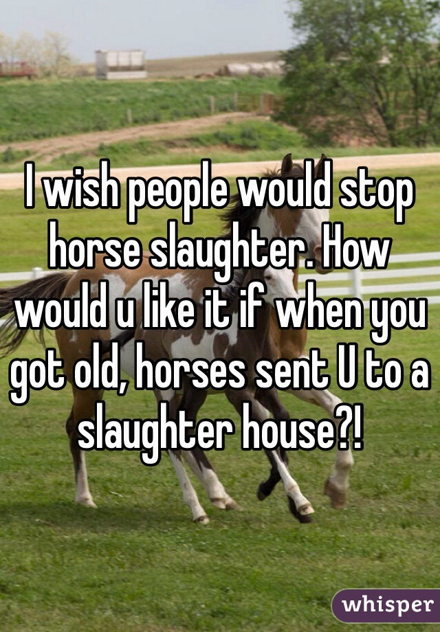 I wish people would stop horse slaughter. How would u like it if when you got old, horses sent U to a slaughter house?!