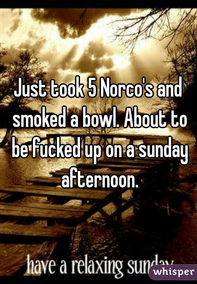 Just took 5 Norco's and smoked a bowl. About to be fucked up on a sunday afternoon.