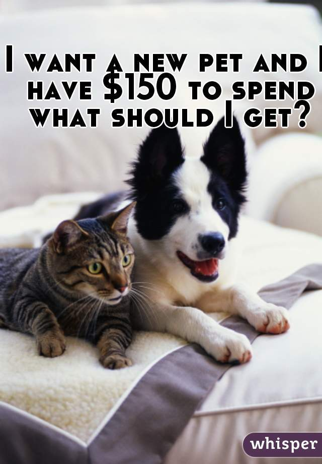 I want a new pet and I have $150 to spend what should I get?