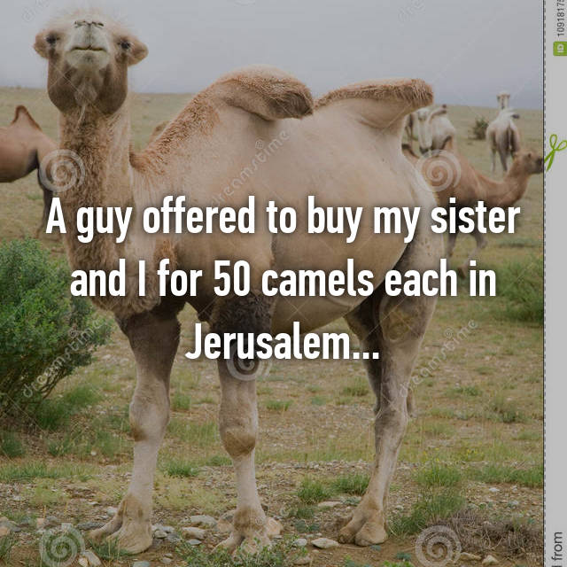 A guy offered to buy my sister and I for 50 camels each in Jerusalem...