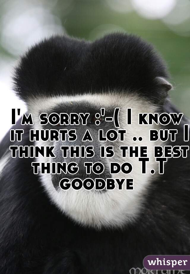 I'm sorry :'-( I know it hurts a lot .. but I think this is the best thing to do T.T goodbye
