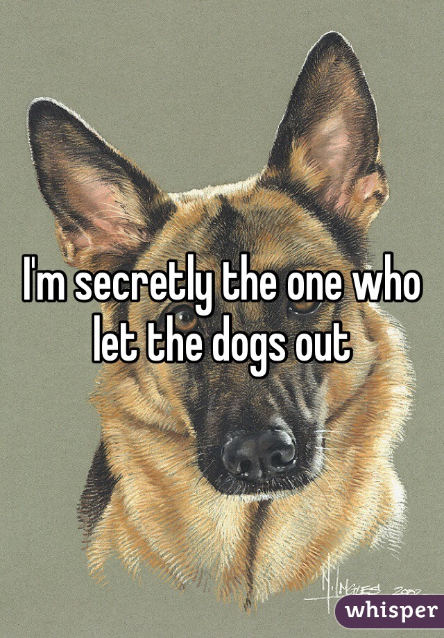 I'm secretly the one who let the dogs out