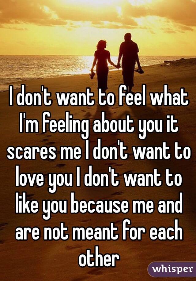 I don't want to feel what I'm feeling about you it scares me I don't want to love you I don't want to like you because me and are not meant for each other